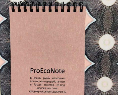 ProEcoNote rose1
